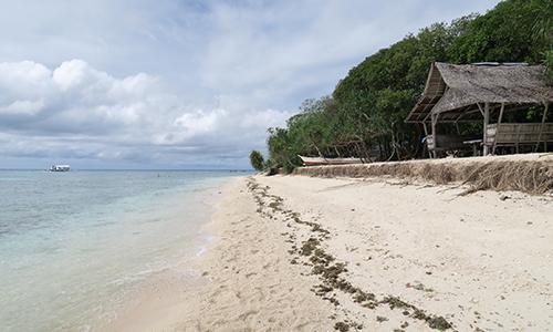 セブ島のビーチリゾート